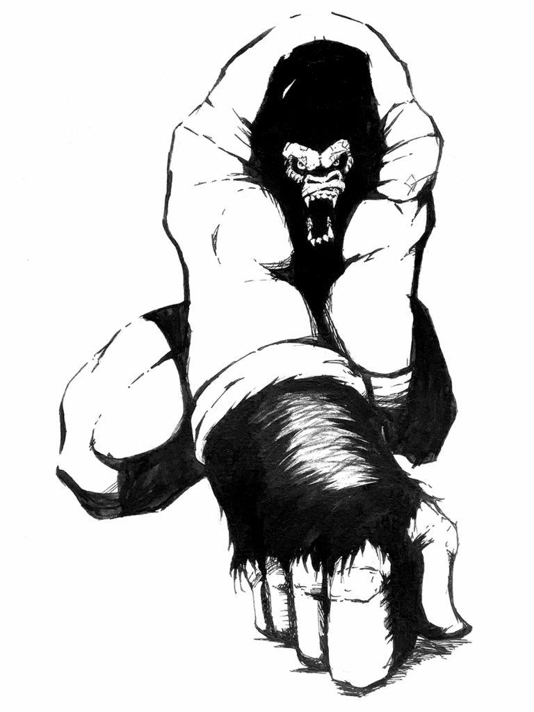 Gorilla | Alan Tamashiro